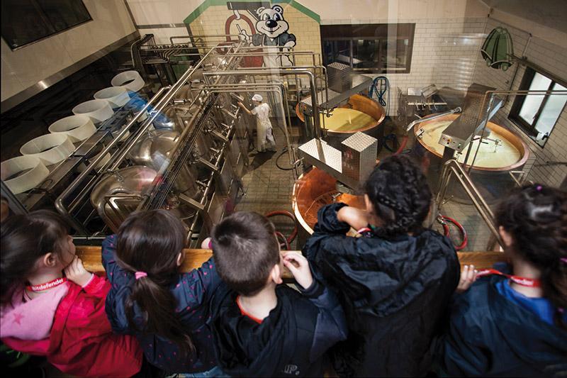 Visites Libres Assistez A La Fabrication De Nos Fromages